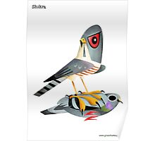 Shikra caricature Poster