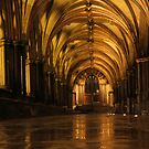 Norwich Cathedral Cloisters by wiggyofipswich