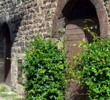 Stone buildings in Assisi with green plants Sticker
