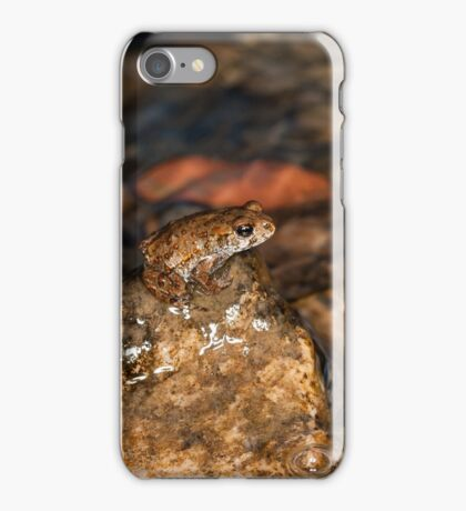 Frog takes the high ground iPhone Case/Skin