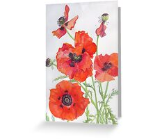 Poppies by Janet Mileham White Greeting Card