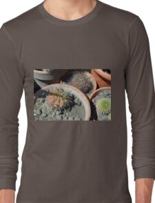 Cacti in flower pots Long Sleeve T-Shirt