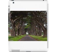 Cypress Tree Tunnel iPad Case/Skin