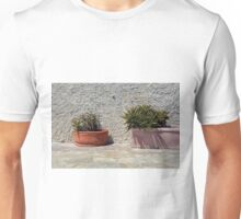 Cacti in flower pots Unisex T-Shirt