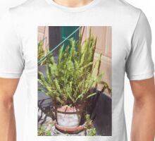 Tall green plant in flower pot Unisex T-Shirt
