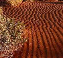 Sand Pattern by Eivor Kuchta