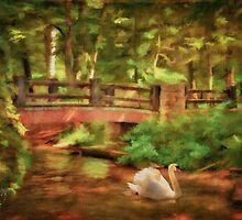 Bridge and Swan by Lois  Bryan
