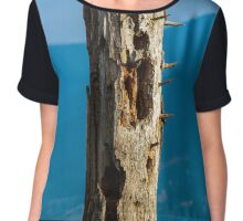 Old dead body of the tree in mountains, autumn landscape Chiffon Top