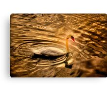 Glowing Swan Canvas Print