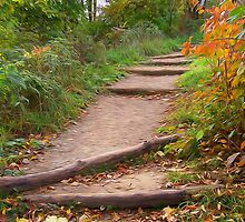 Autumn Trails by Phil Perkins