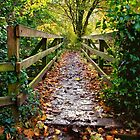 The Wooden Bridge by Ellesscee