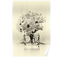 Backlit Bouquet Poster