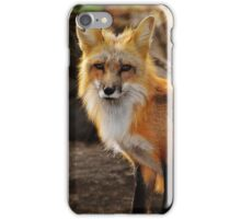 fox in the forest 2 iPhone Case/Skin