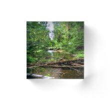 Wilderness Stream Photo Art Acrylic Block
