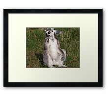 I Do Ponder Framed Print