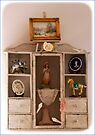 Rustic Display Cabinet by Sandra Foster