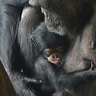 Tender Moment by Dorothy Thomson