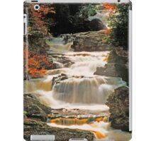 CASCADES,CALASAJA GORGE iPad Case/Skin