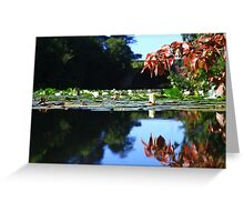 Stackpole Court -The One Arch Bridge. Greeting Card