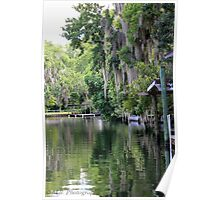 Hanging Willow over the Crystal River  Poster