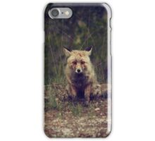 fox in the forest 3 iPhone Case/Skin