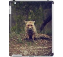 fox in the forest 3 iPad Case/Skin