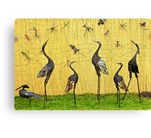 A sedge of cranes Canvas Print