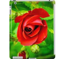 A Single Red Rose iPad Case/Skin