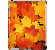 Pile of Colorful Maple Leaves iPad Case/Skin