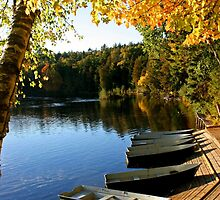Michigan Autumn by John Carpenter
