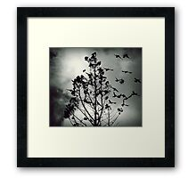 There's something in the air tonight Framed Print
