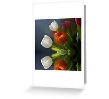 Mirrored Tulips Greeting Card