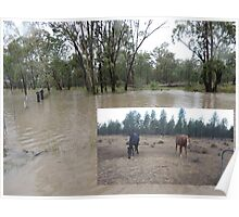 A land of contrasts - from drought to flood Poster