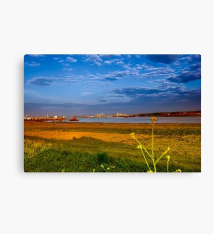 Falling Sky Canvas Print