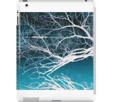 Winter's end iPad Case/Skin
