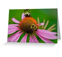 Busy Bumble Bees Greeting Card