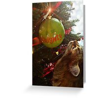 Naughty Cat And The Christmas Tree Greeting Card