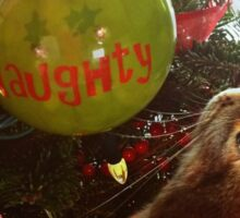 Naughty Cat And The Christmas Tree Sticker