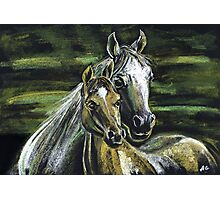 "Tenderness""Pastel Horse painting, Romantic Drawing Art, Landscape Photographic Print"