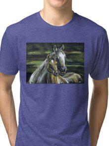 "Tenderness""Pastel Horse painting, Romantic Drawing Art, Landscape Tri-blend T-Shirt"