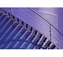 Purple & Brown Photographic Print