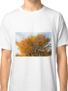 Autumn Colours in the sunshine  Classic T-Shirt