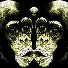 Monkey Kiss by grafoxdesigns