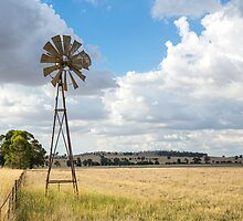 Along the fence line...tall & proud....Windmill !!! by mitpjenkeating