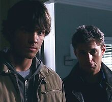 Sam and Dean Winchester by dcsmith