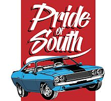 Pride of South Challenger Photographic Print