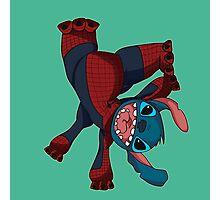 Spider Stitch Photographic Print
