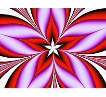 Spirit Flower Photographic Print