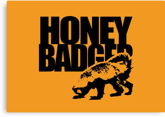 Honey Badger by jezkemp