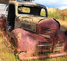 Rusty and old by zumi
